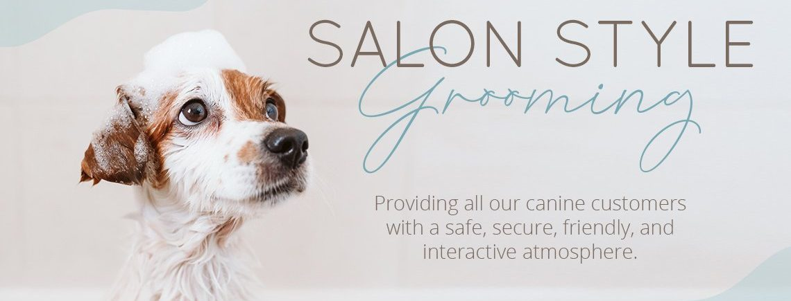 Salon Style Grooming by Poochies Austin Groomers and Pet Lounge